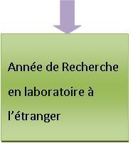 Année de recherche en laboratoire à l'étranger